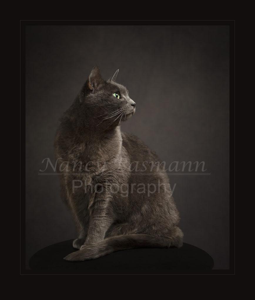 Binghamton's Unique Photographer