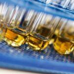synthetic vs human urine drug test
