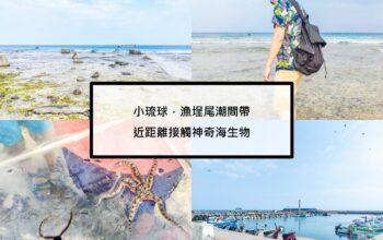  屏東 小琉球 漁埕尾潮間帶 海洋生物打擾一下,請讓我們暫時出現在你們的家