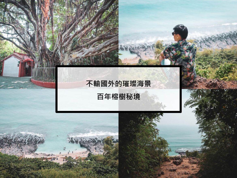 百年榕樹精彩圖片