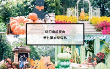 |新竹|尖石|薰衣草森林|奇幻南瓜慶典