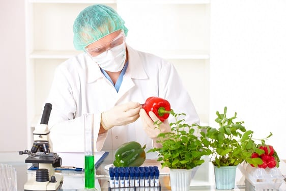 The Experts On Genetically <br>Modified Foods(GMO's)
