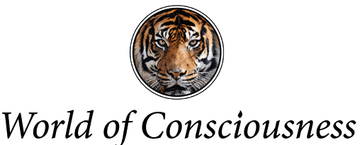 In Pursuit of Global Awareness. World of Consciousness is a platform for conscious knowledge, mind science, spirituality and uplifting, inspiring and truthful information.<br><br><strong>https://www.worldofconsciousness.com/</strong>