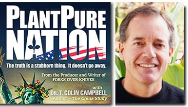 nelsoncampbell_profile-book