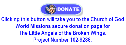 angels_donate_button
