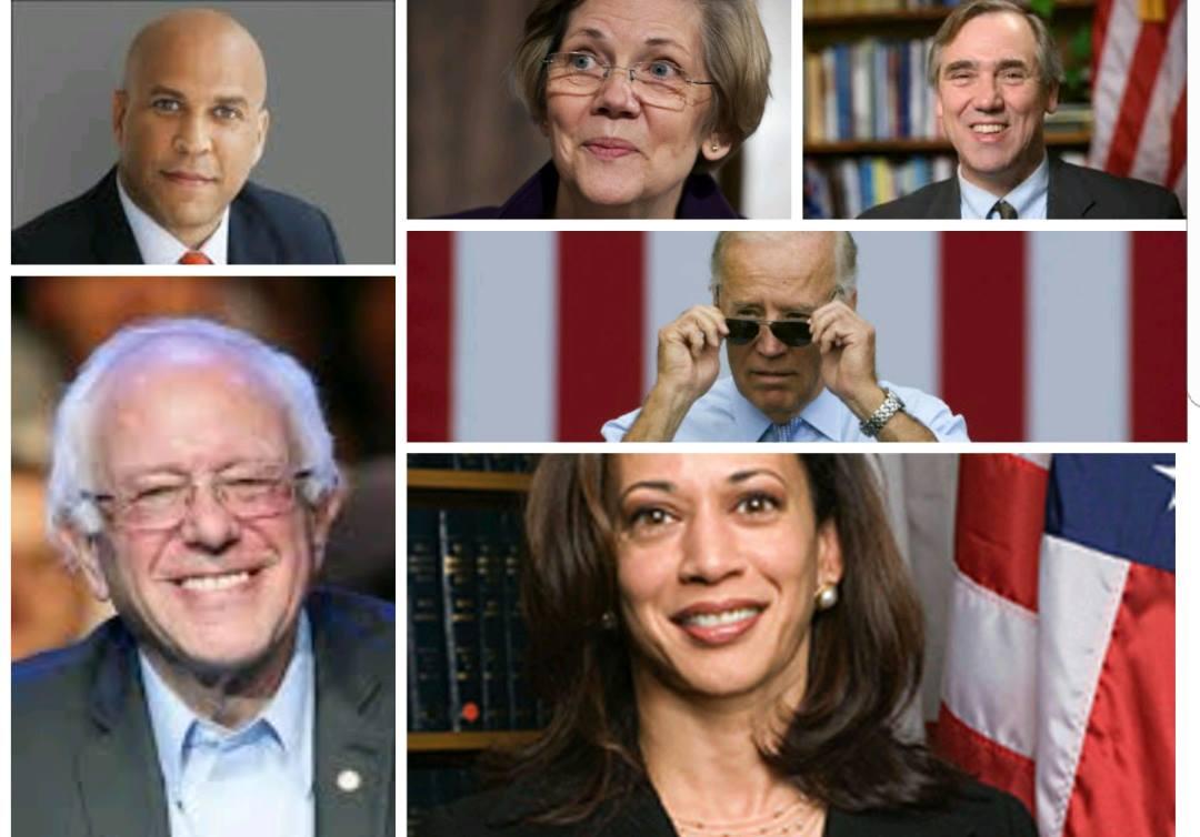 Democrats 2020