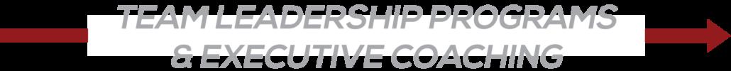 Team Leadership Programs & Executive Coaching