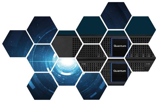 Quantum DXi4800