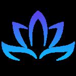 MSY Icon