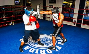box-sparring-1