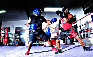 box-sparring-2