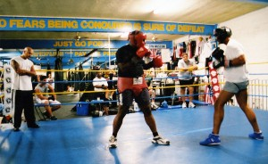 box-sparring-3
