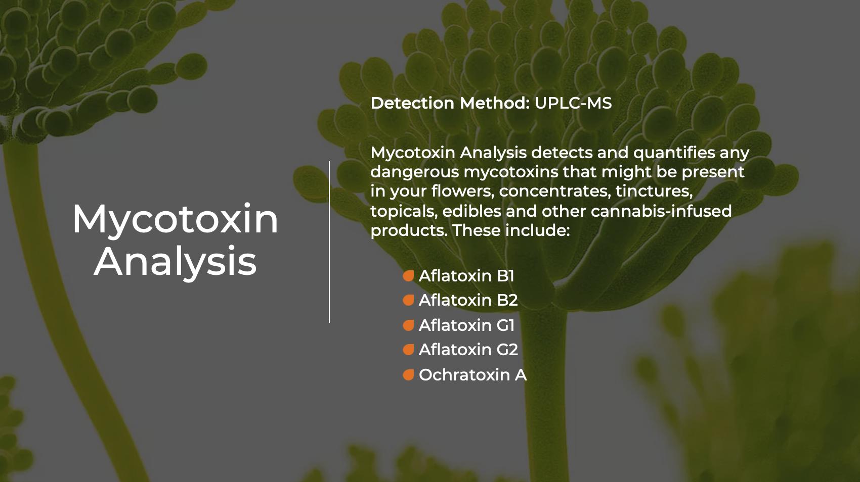 Mycotoxin Analysis - Indo Labs
