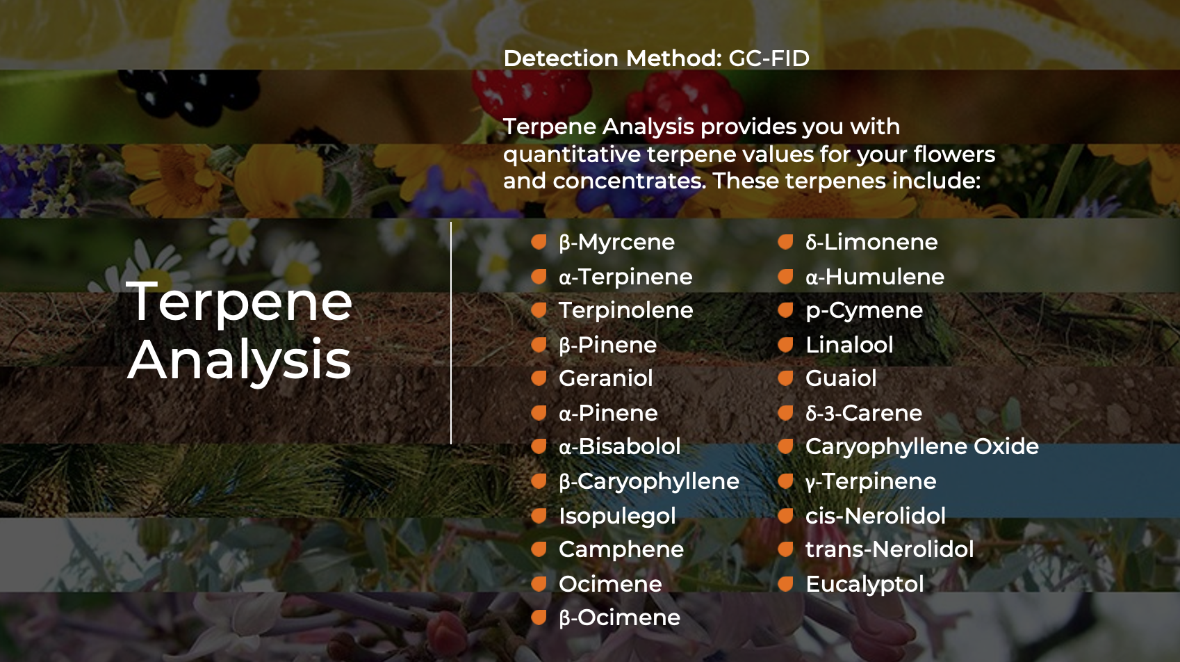 Terpene Analysis - Indo Labs