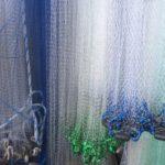 Cast Nets