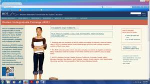 graphic WUE website screenshot