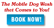 dog grooming denver las vegas