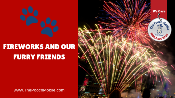 Fireworks and Our Furry Friends