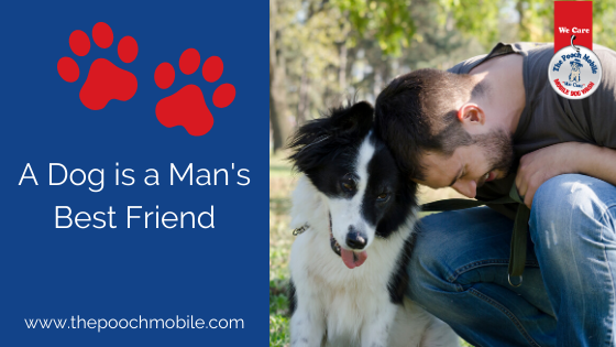 """""""Dogs are a Man's Best Friend"""""""