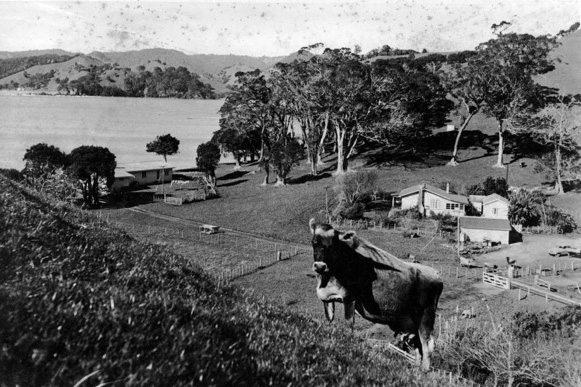 Helena-Bay-History1