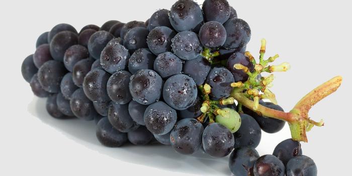 Carignan grapes