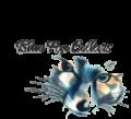 Blue Fox Cellars