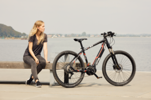 Delta Plus 48 MTB electric bike