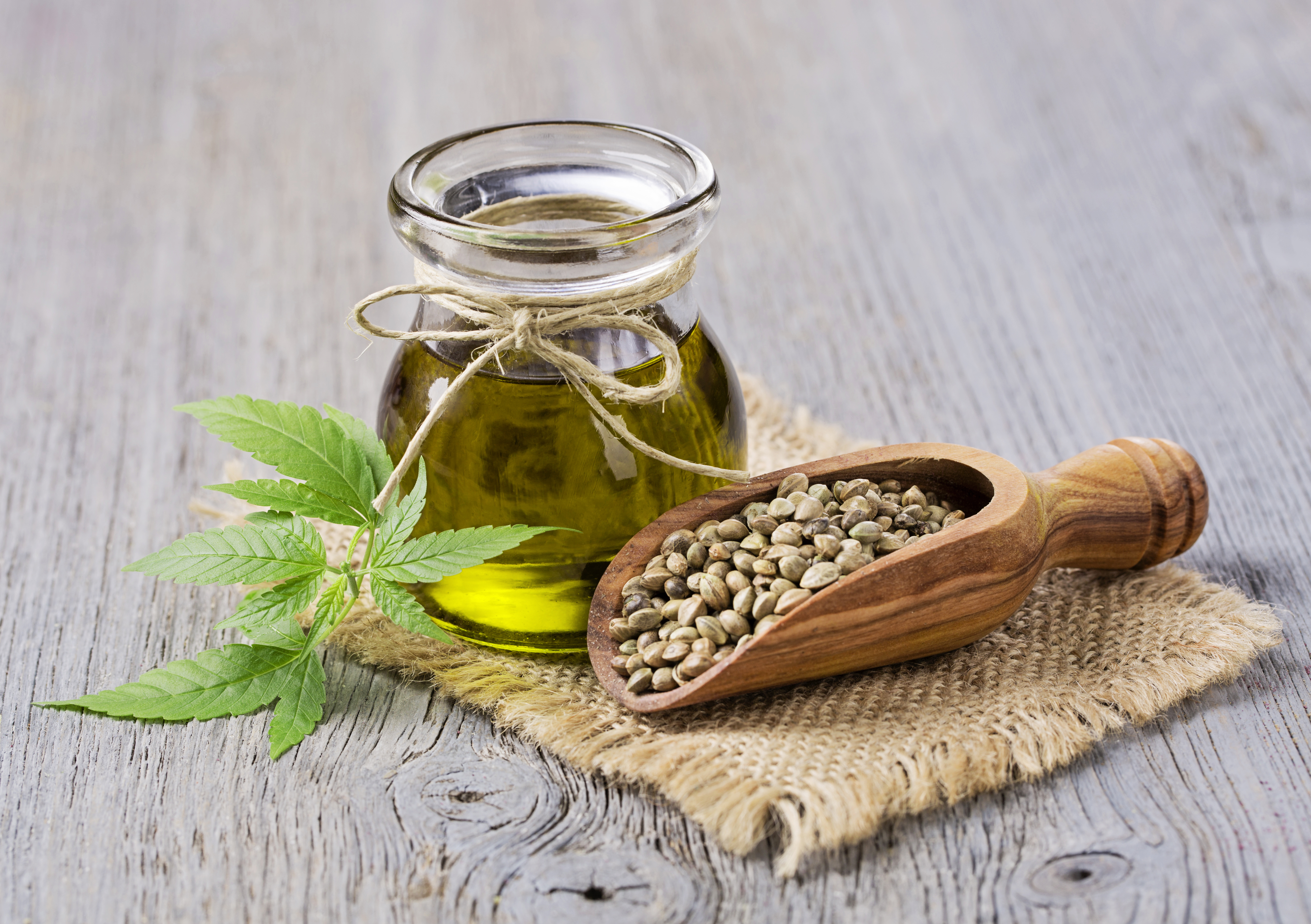 Which CBD Oil Should You Buy?