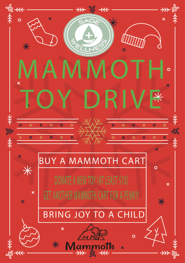 Mammoth toy drive promotion