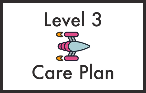 wordpress care plan level 3