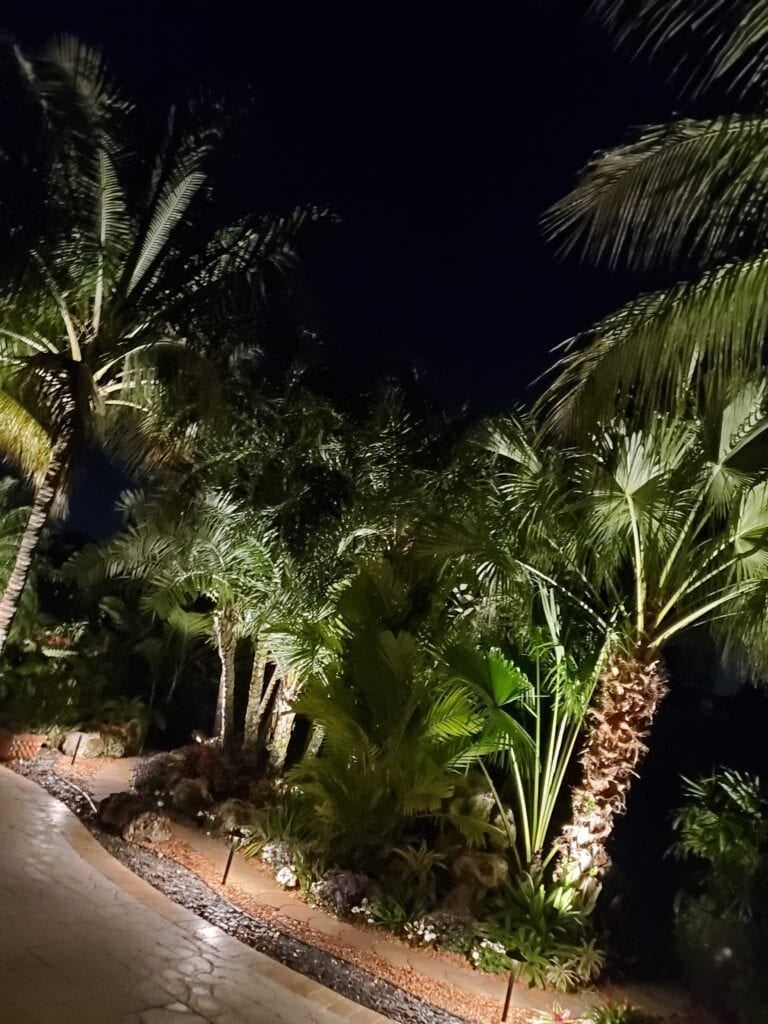 Landscape Lighting-Lake Worth-Illumination FL