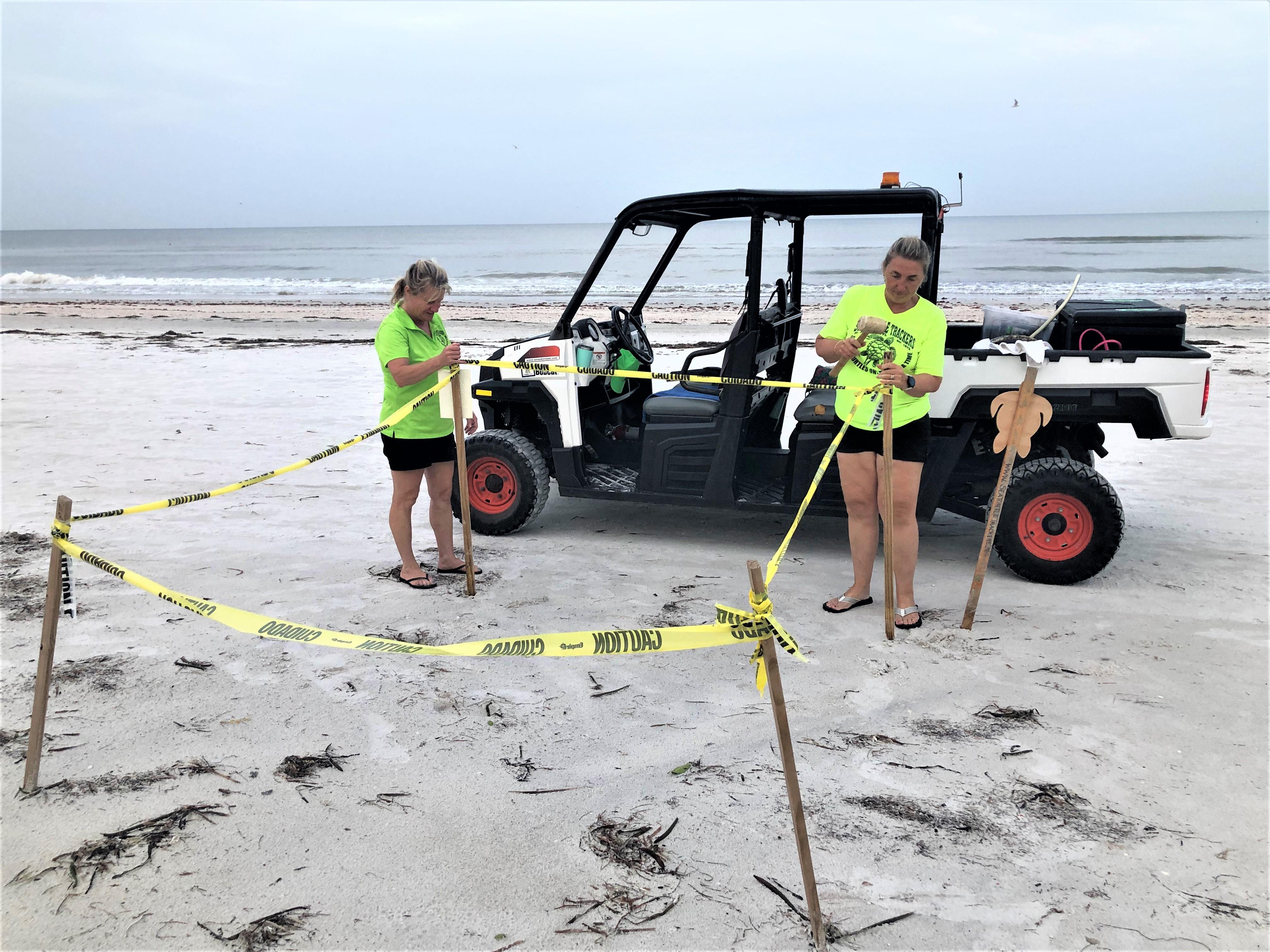 Volunteers work on nest maintenance on the beach.