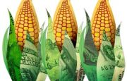 Associated Press study says ethanol is bad for the environment