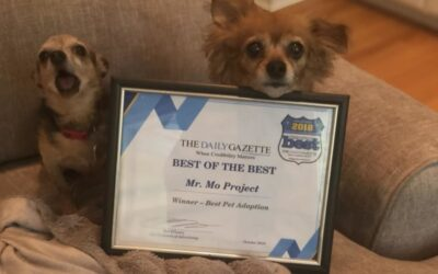 We WON! Best of the Best Pet Adoption!