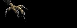 Sea Hawk Epoxy Logo