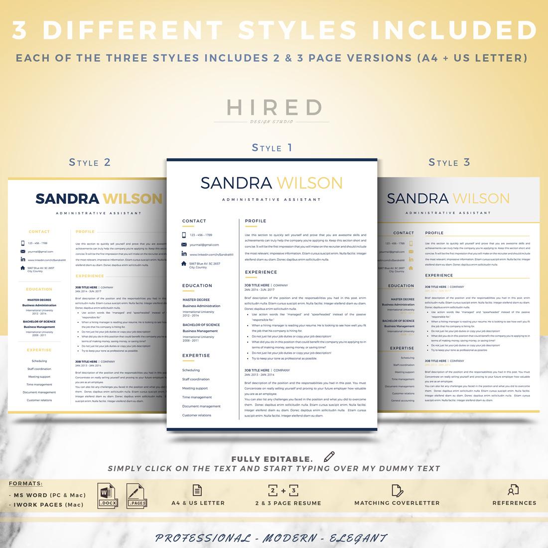 "Modern Resume Template for MS Word: ""Sandra"""