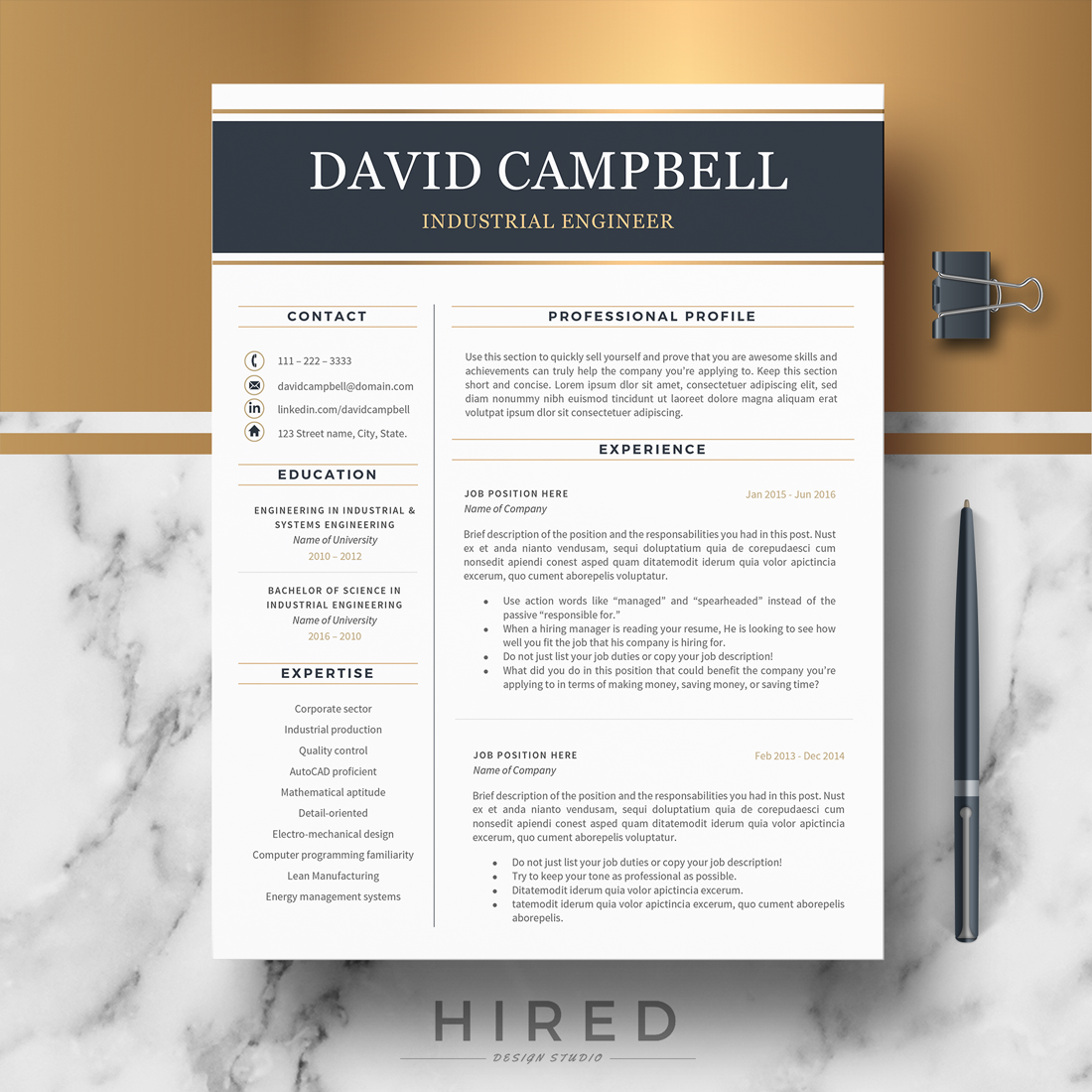 """Modern Resume Template for MS Word: """"David"""""""