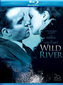 dvd WILD RIVER