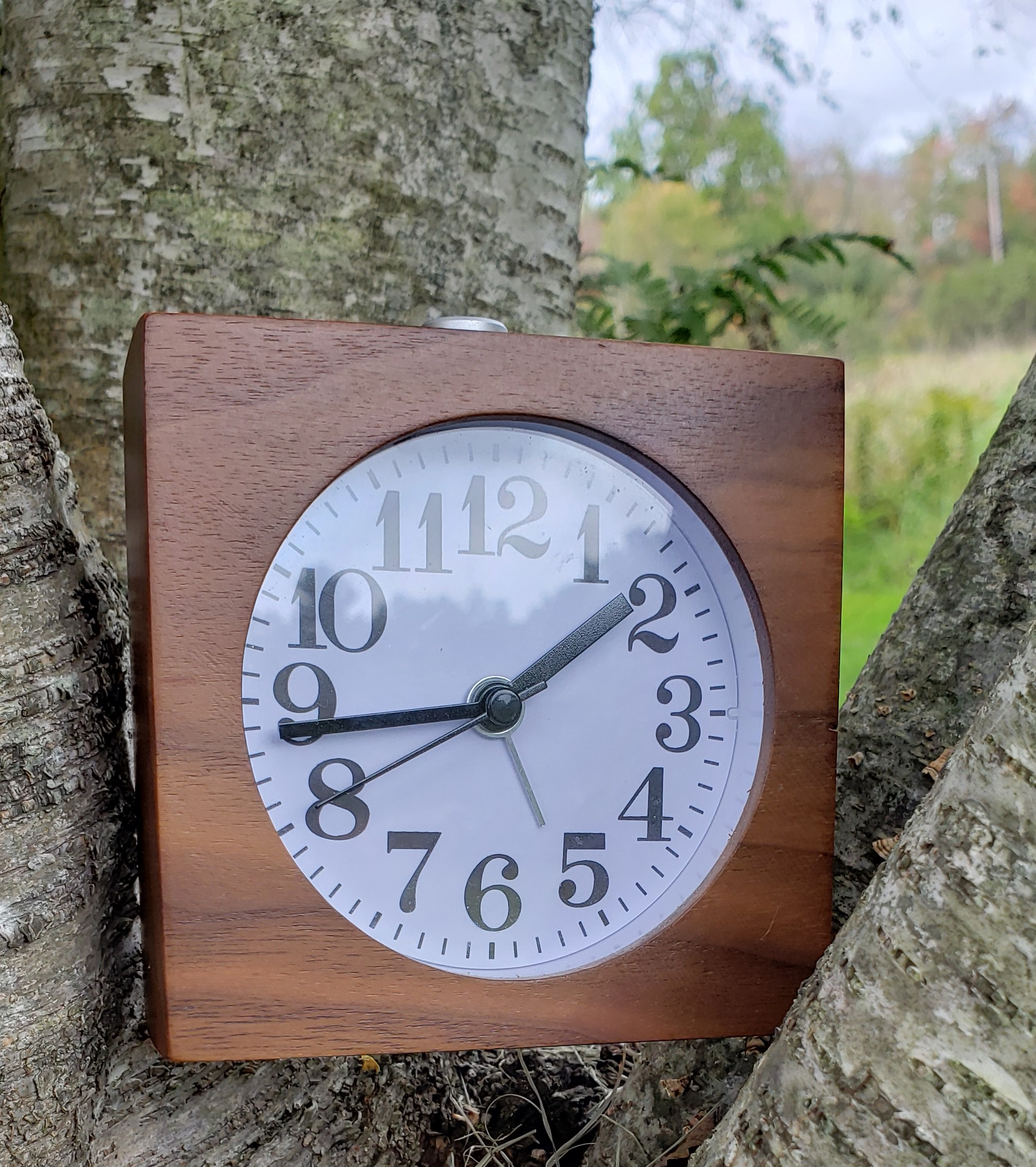 time in nature