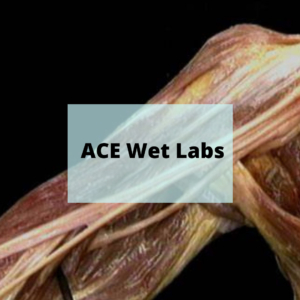 ACE Wet Labs