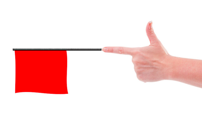 Seeing Red Over Red Flag Laws
