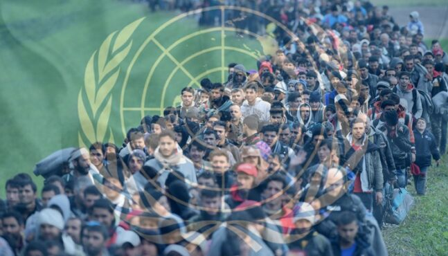 IOM Reports The Migrant Population That Has Reached Europe So Far In 2019