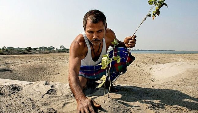 In 40 Years One Man Reforested An Island In India
