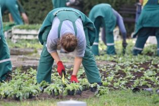 Is Gardening Racist? This Professor Says Yes