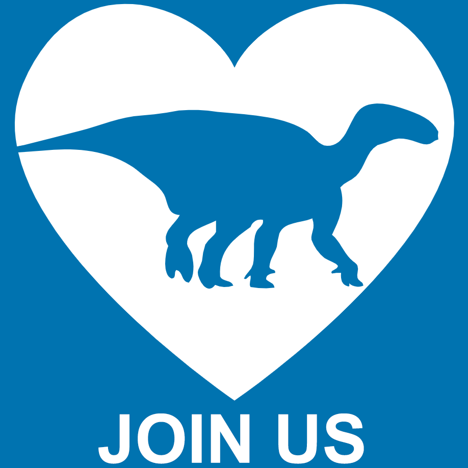 Join Dinosaur Ridge