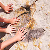 Picture of children touching dinosaur track