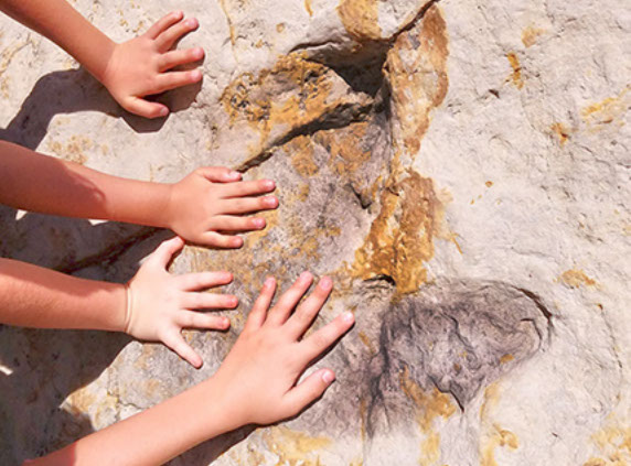 Picture of small hands on dinosaur tracks