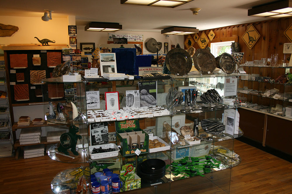 Picture of Dinosaur Ridge Main Visitor Center Gift Shop