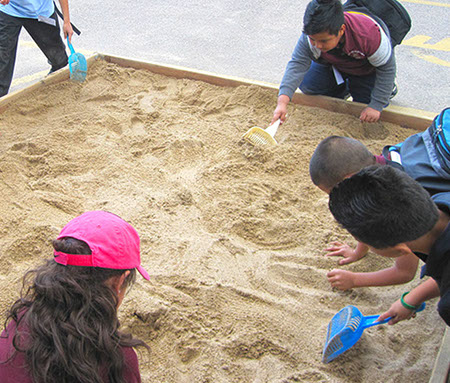 Picture of Kids Dig Areas Seaway Fossil Box: Keep A Fossil exhibit
