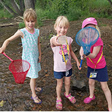 Picture of Dinosaur Ridge programs - summer camps